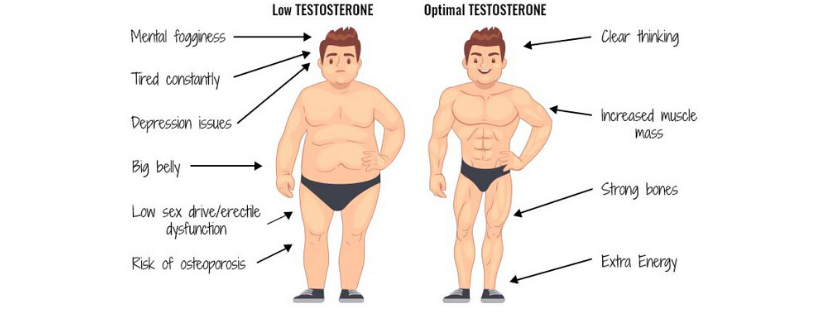 testosteron tomax